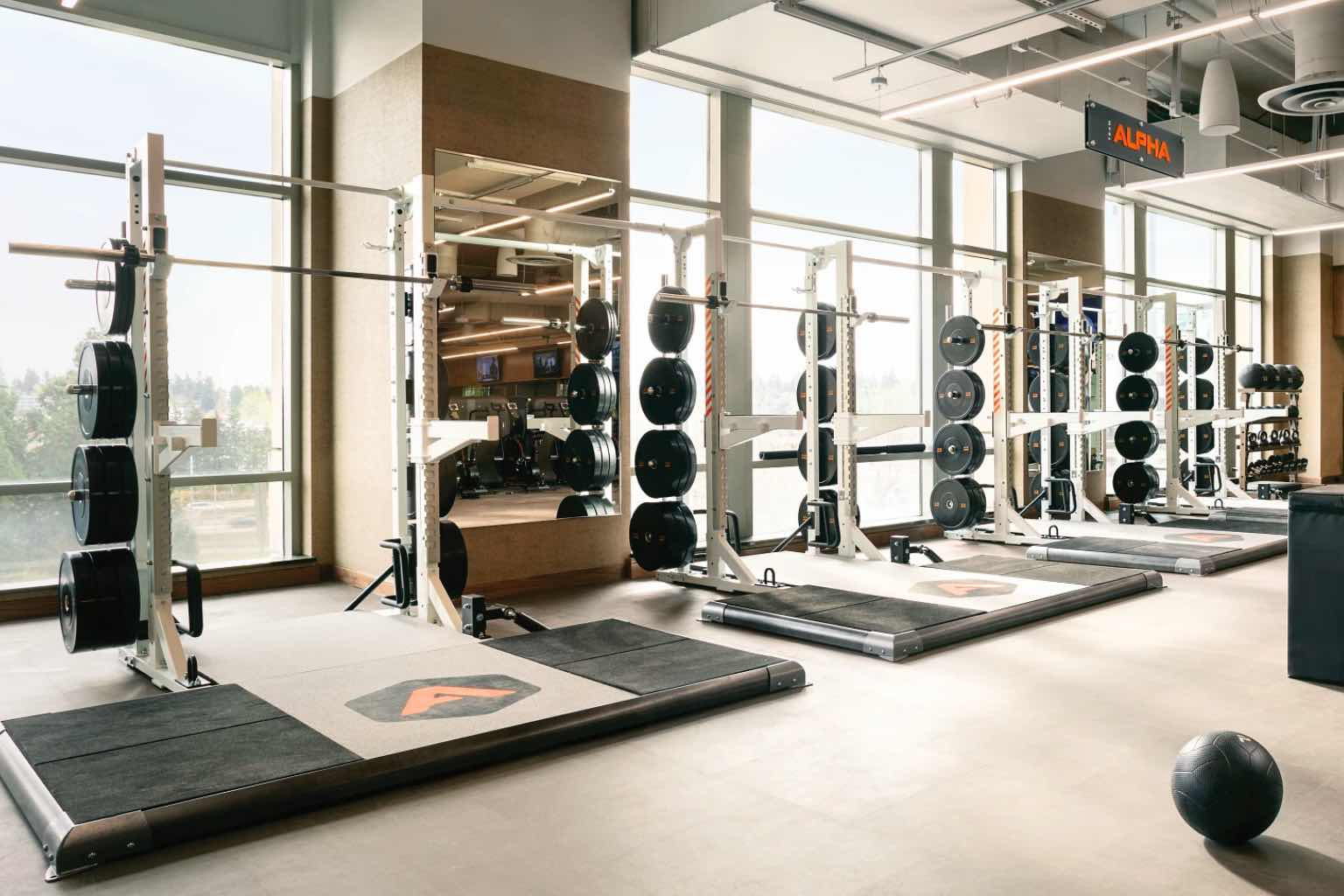 alpha weight room