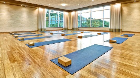 A well lit Life Time Yoga Studio with yoga mats and bricks laid out