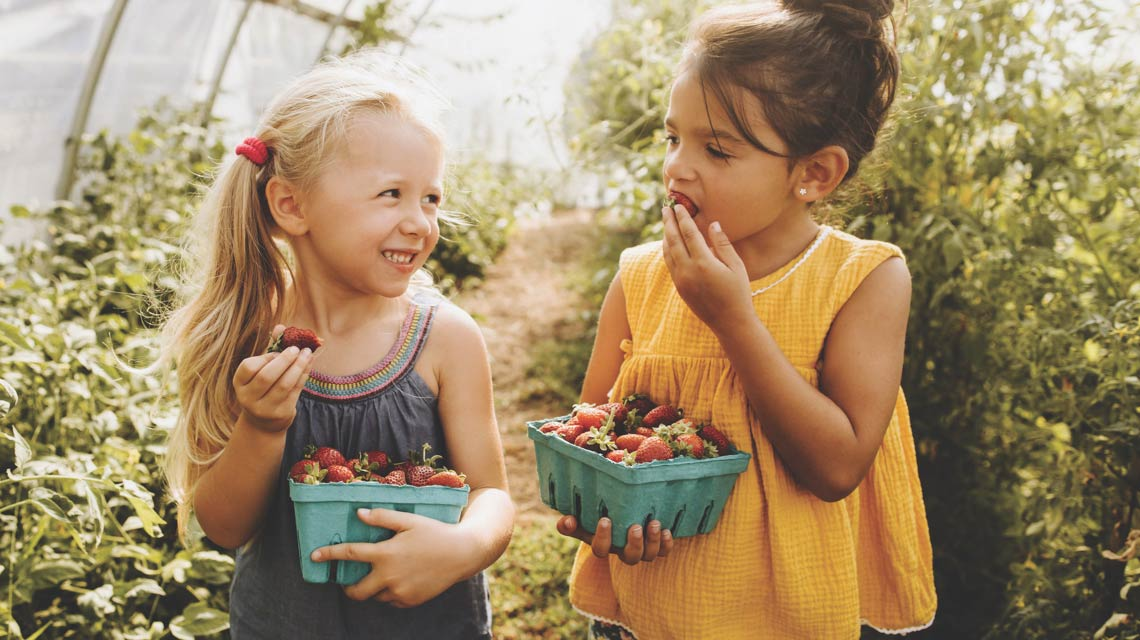 two children enjoying eating strawberries due to Life Time Foundation
