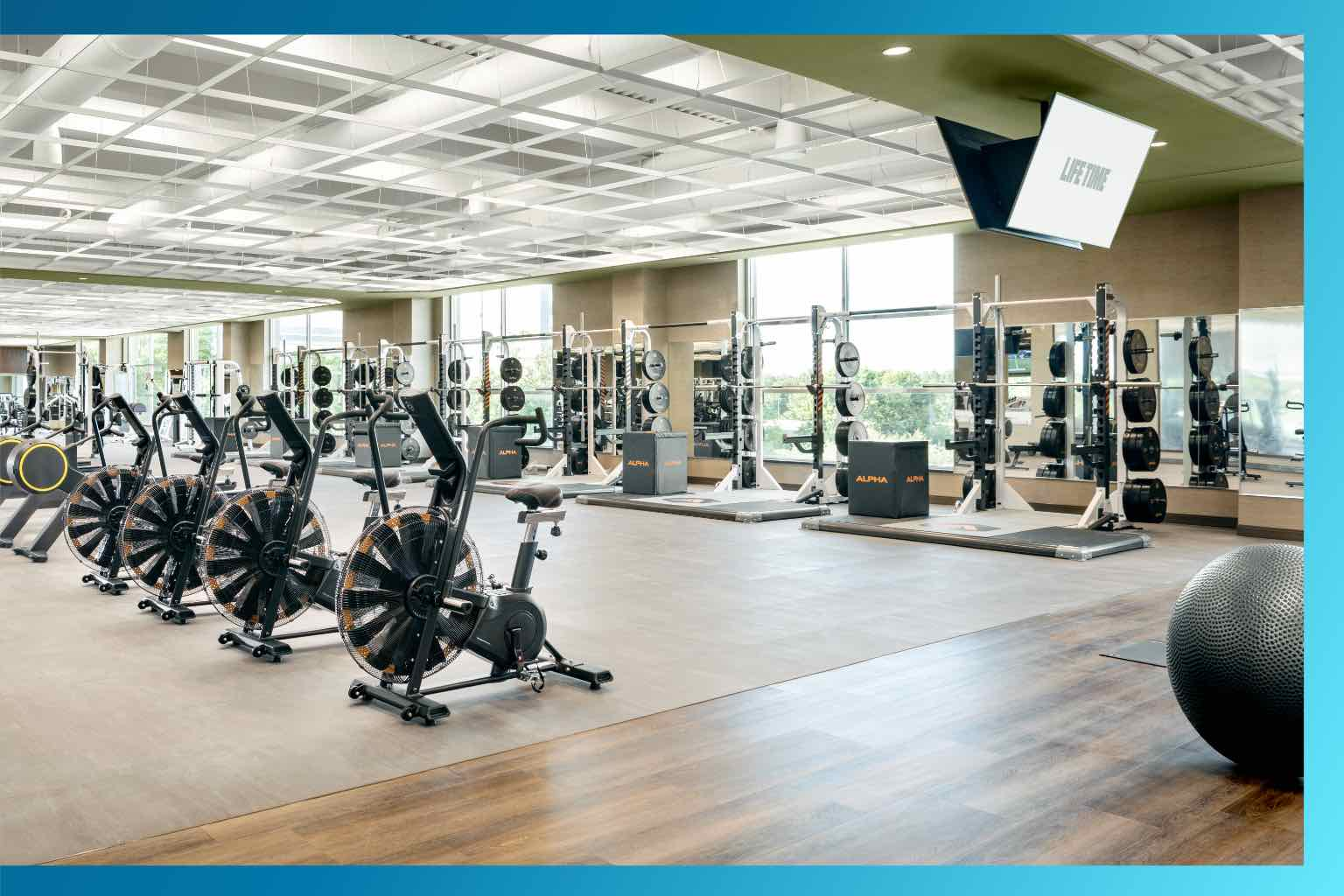 A sunlit fitness floor filled with well-spaced weight training equipment