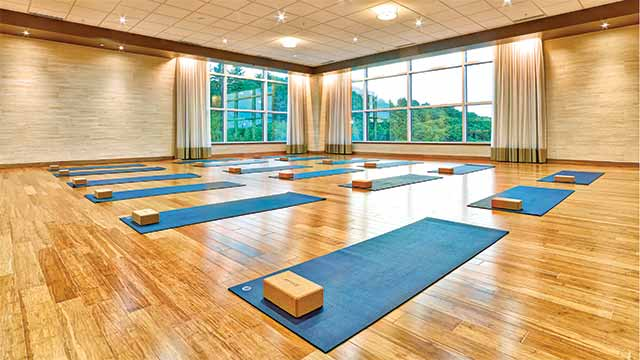 Mats and blocks in a yoga studio