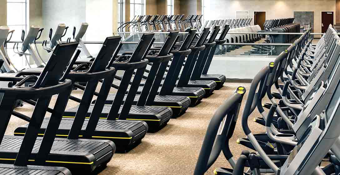 Rows of cardio machines on the fitness floor at Life Time