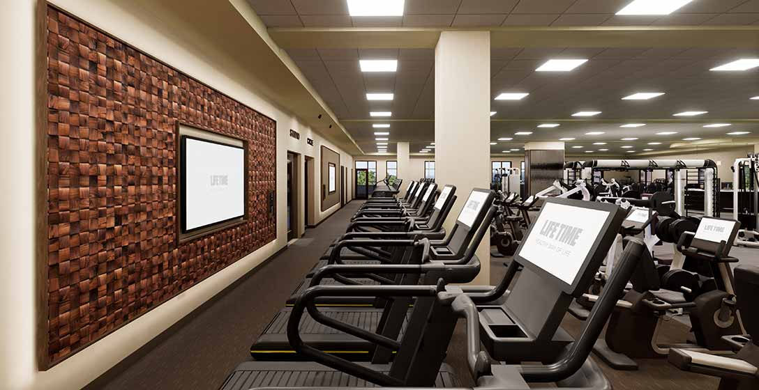 Treadmills lined up on the fitness floor