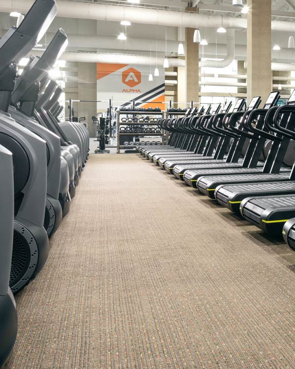 rows of treadmills and elipticals