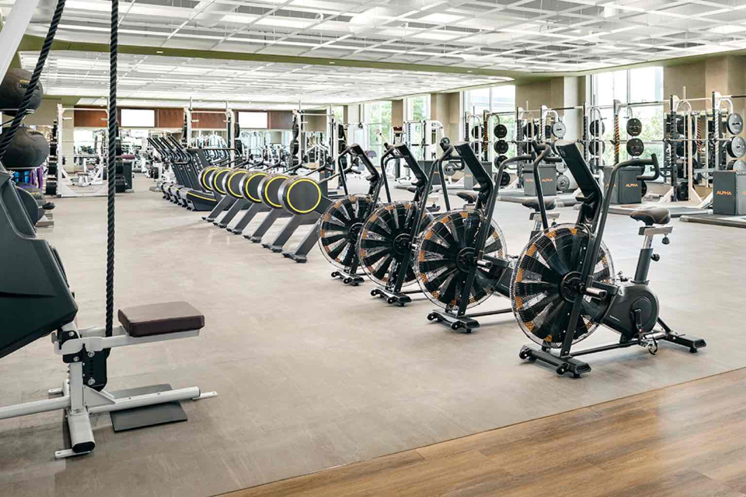 A wooden fitness floor with Olympic-style training platforms, cardio and weight machines and racks of exercise balls