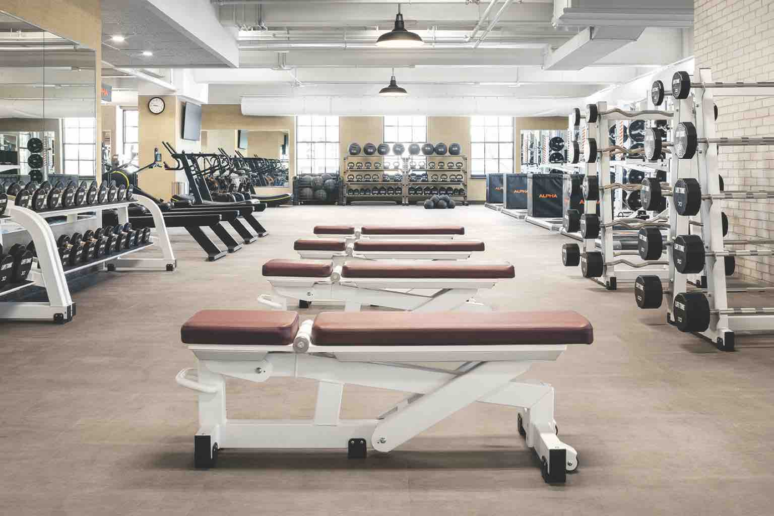 Marvelous Luxury Health Club And Gym Life Time Ardmore Alphanode Cool Chair Designs And Ideas Alphanodeonline