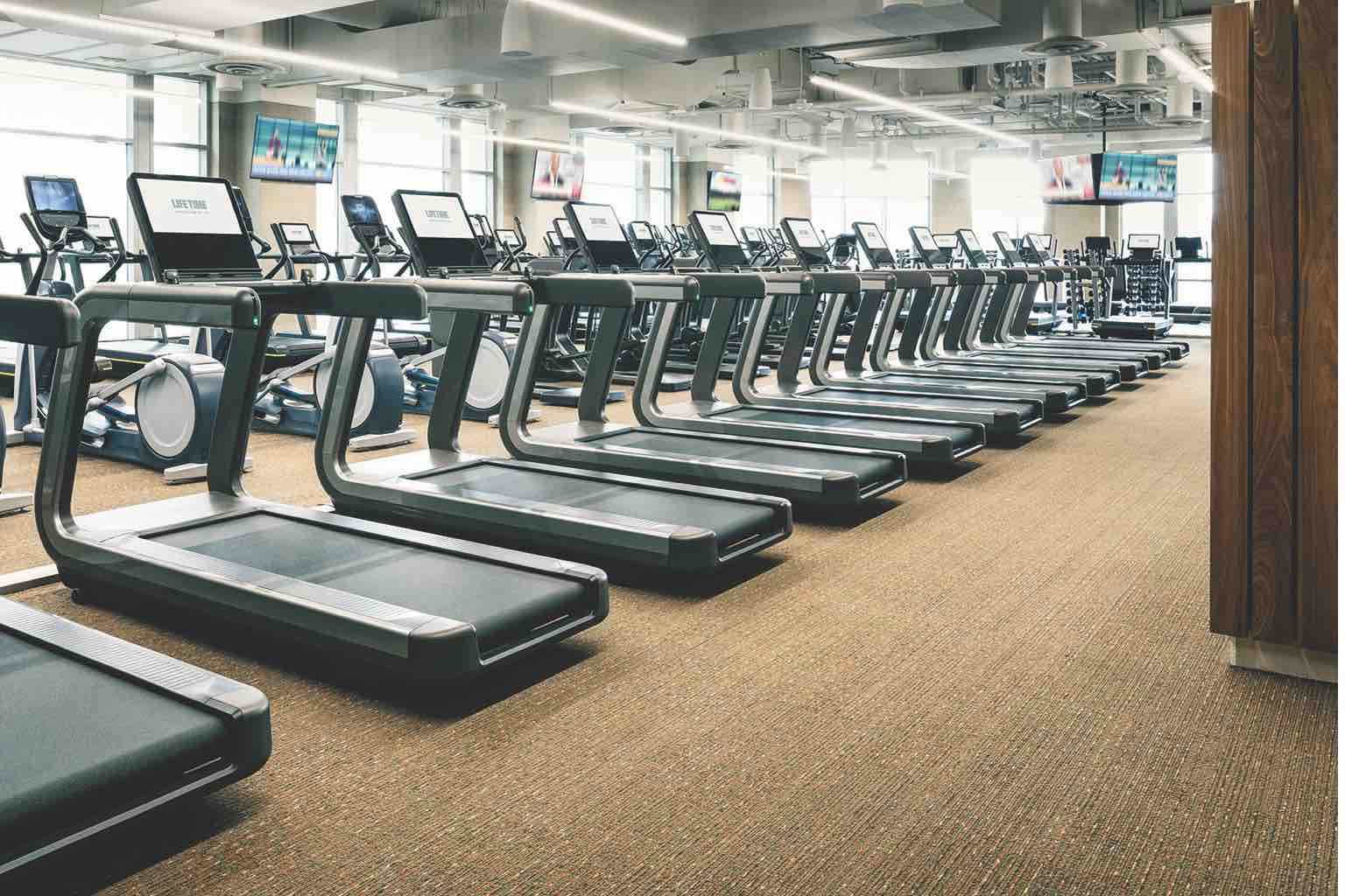 Rows of cardio machines lined up on Life Time Bellevue's spacious fitness floor