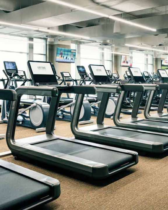 Row of treadmills on the fitness floor at Life Time