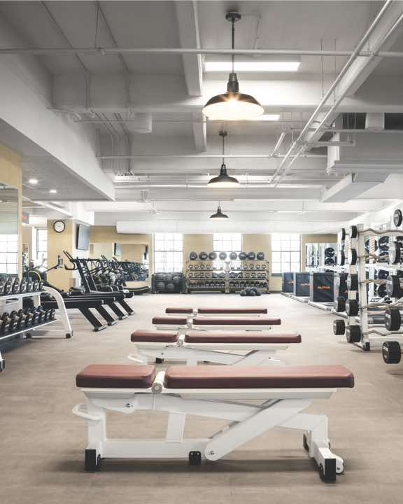 Expansive weight-training area with benches and free weights at Life Time
