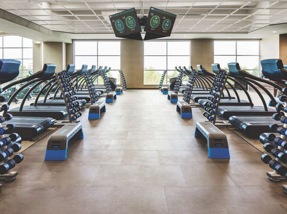 Two rows of treadmills and racks of hand weights on the fitness floor at Life Time