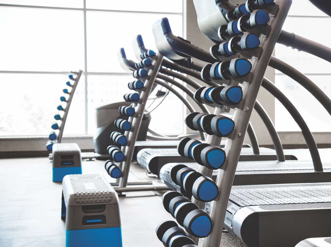 Close view of a rack of hand weights next to a row of treadmills at Life Time